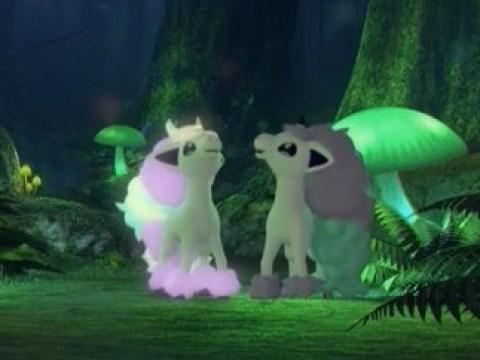 Galarian Ponyta spotted in Pokémon Sword & Shield Glimwood Tangle livestream