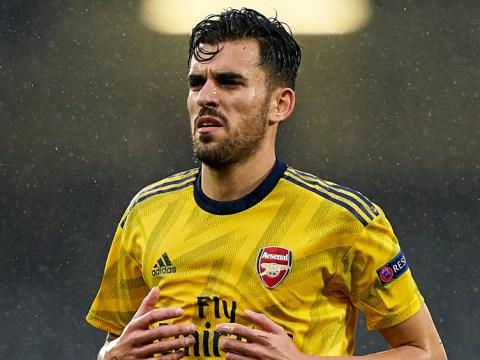 Dani Ceballos makes U-turn over Arsenal future and vows to earn starting spot under Mikel Arteta