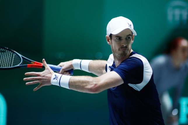 Andy Murray confesses he's out of shape as Great Britain scrape past the Netherlands