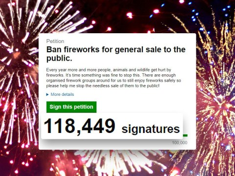 Over 100,000 people sign petition to ban sale of fireworks in shops