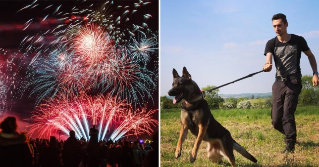Picture of firework display (left) and Yorkshire based dog trainer Jay Gray