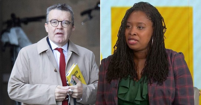 Dawn Butler is hoping to replace Tom Watson as Labour Deputy Leader (Picture Rex/Bloomberg)