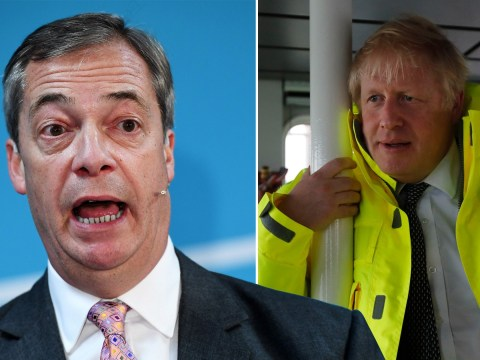 Nigel Farage claims Tories offered 'jobs and peerages' to help them win seats