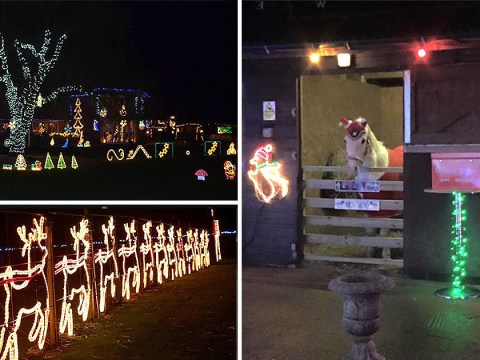 '1,000,000' bulb Christmas light charity display pulled after organisers suffered abuse