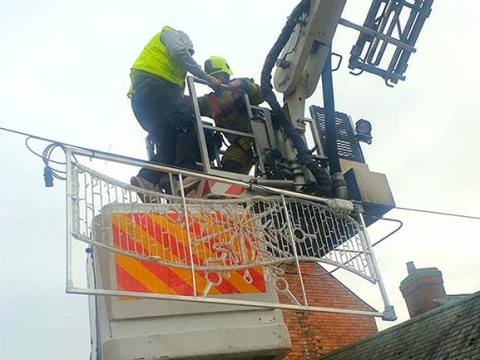 Man gets stuck seven metres in the air while putting up Christmas lights
