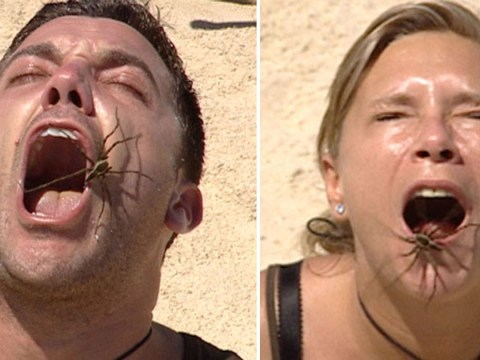 I'm A Celebrity to use live bugs in Bushtucker Trial – as stars have to hold spiders in mouths despite controversial ban