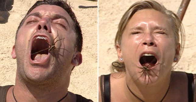 The hold and mouth trial is back on I'm A Celeb