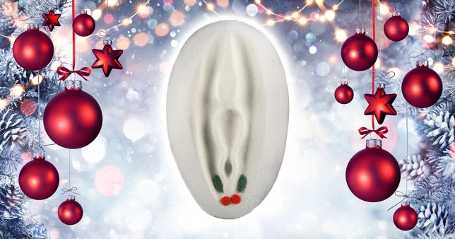 Christmas pudding flavour vagina that you can decorate yourself (Picture: Getty)