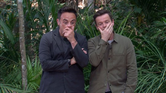 STRICT EMBARGO - NOT TO BE USED BEFORE 22:00 GMT, 27 Nov 2019 - EDITORIAL USE ONLY Mandatory Credit: Photo by ITV/REX (10486414t) Bushtucker Trial, Deadly Dungeon - Anthony McPartlin and Declan Donnelly 'I'm a Celebrity... Get Me Out of Here!' TV Show, Series 19, Australia - 27 Nov 2019