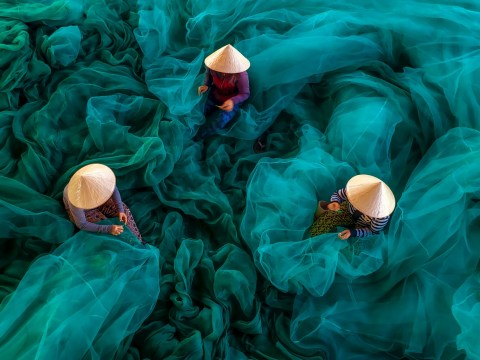 These are the world's best photos featuring the colour blue