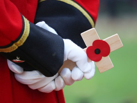 Remembrance Day 2019: Poems and quotes for Poppy Day