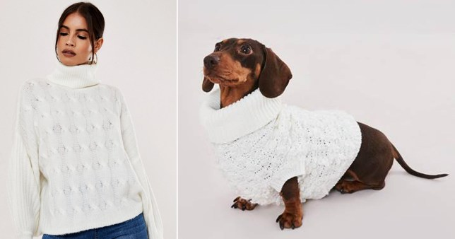 missguided launches matching dog and owner jumpers