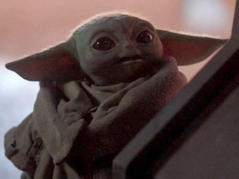 Sorry Star Wars fans, Baby Yoda is not in The Rise Of Skywalker