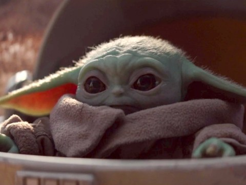What species is Baby Yoda in The Mandalorian and when can you watch the show in the UK?