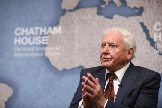 David Attenborough speaks
