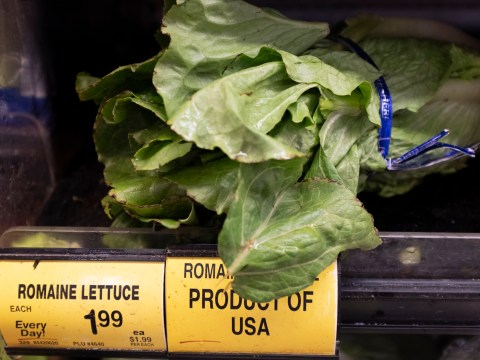 US residents warned not to eat romaine lettuce from Salinas Valley