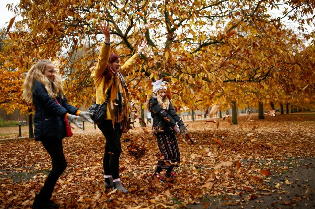 People throw leaves in the air in Hyde Park during autumnal weather in London, Britain, November 23, 2019. REUTERS/Henry Nicholls