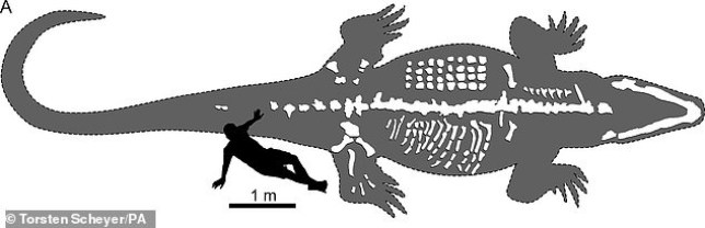 22343222-7800355-An_ancient_crocodile_species_that_weighed_up_to_three_tonnes_had-a-8_1576572926340-c044.jpg?quality=90&strip=all&zoom=1&resize=644,208&ssl=1