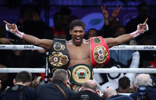 Anthony Joshua poses and smiles after winning back his heavyweight titles