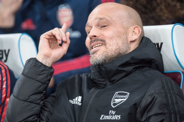 Interim Arsenal manager Freddie Ljungberg has been linked with the vacant post at Malmo
