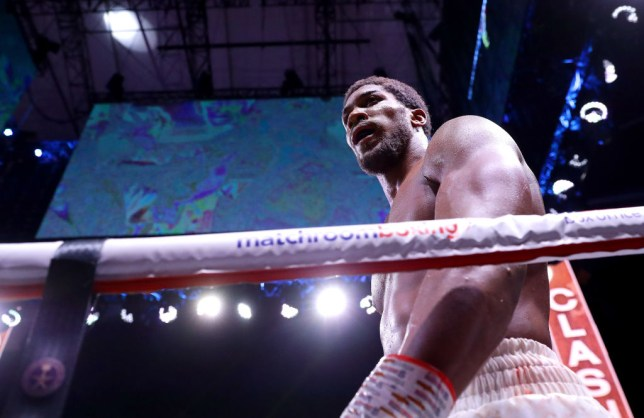Anthony Joshua is pictured through the ropes during a boxing fight