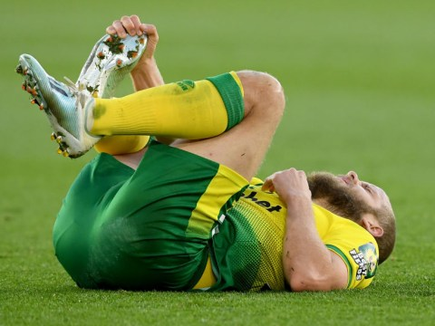 Teemu Pukki injury not as serious as feared as Norwich boss Daniel Farke expects him to be fit for Wolves