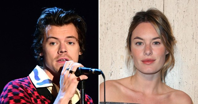 Harry Styles and Camille Rowe
