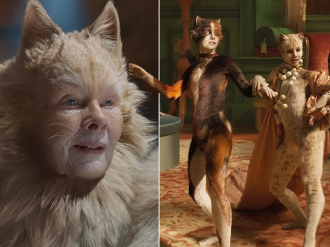 Cats is the best worst movie about cats ever made