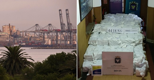 Record $1,000,000,000 cocaine haul discovered hidden inside soy flour containers