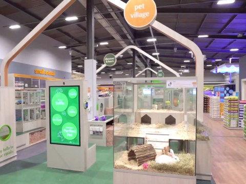 Pets at Home slammed over 'interactive' play areas with small animals