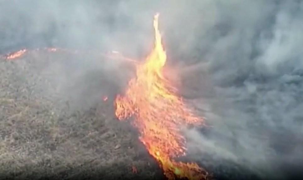 Australian 'fire-nado' in bushfires