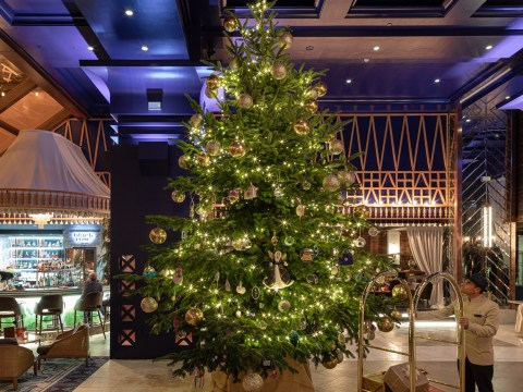 Spanish hotel's £11.9 million Christmas tree is the world's most expensive