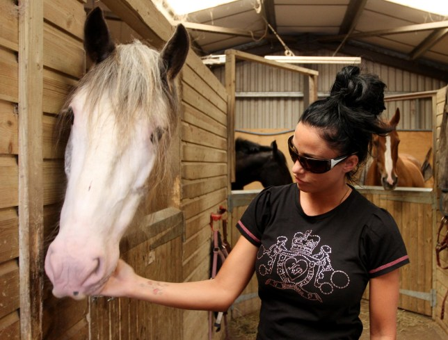 Katie Price 'heading onto Celebs On The Farm' in comeback bid after bankruptcy