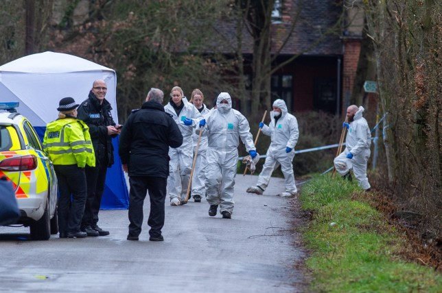 Police search team including forensics work in Hogg Lane, Elstree,