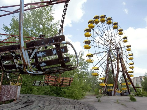 Fungi from Chernobyl blast zone could protect astronauts from radiation