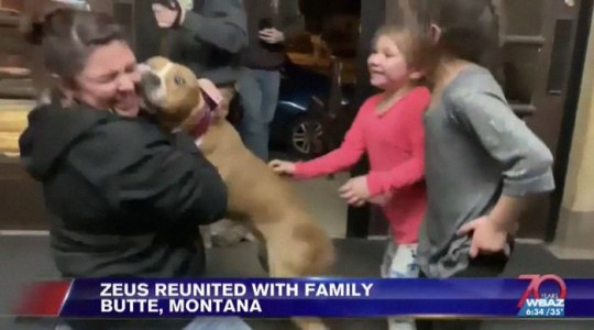 15 volunteers help stolen dog get back to his home (Picture: WBAZ)