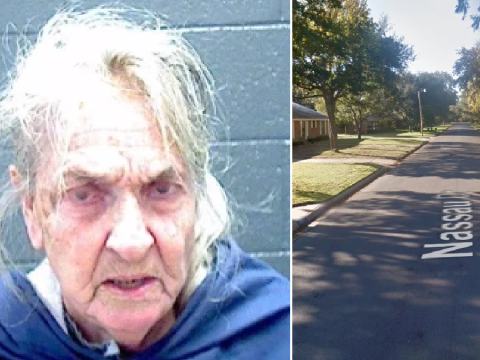 'Killjoy, 81, drove at children for playing in pool then led police on 10 mile chase'
