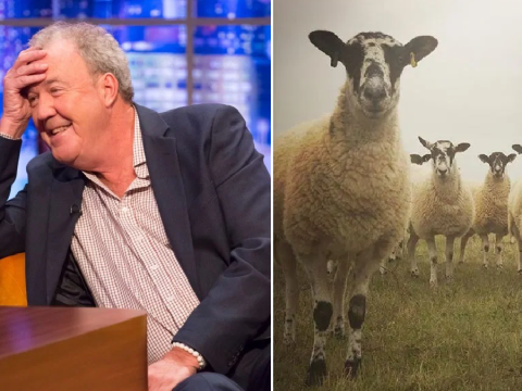The Grand Tour star Jeremy Clarkson watches his sheep having sex as he gets to grips with farming life