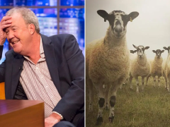 Jeremy Clarkson watches his sheep having sex as he gets to grips with farming life