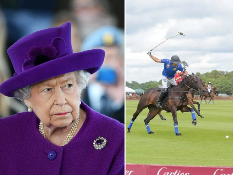 Ministers relaxed rules on visas for polo teams 'to please the Queen'