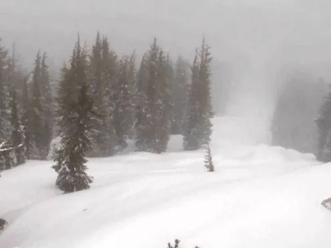 One dead, one injured after avalanche slams into Lake Tahoe ski resort
