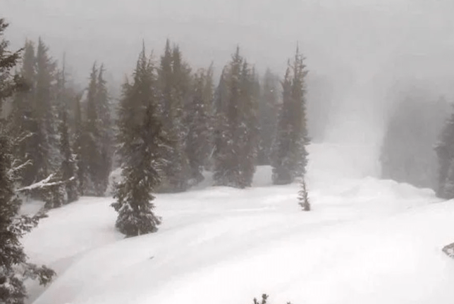 Picture of Alpine Meadows ski resort in California after Friday's avalanche