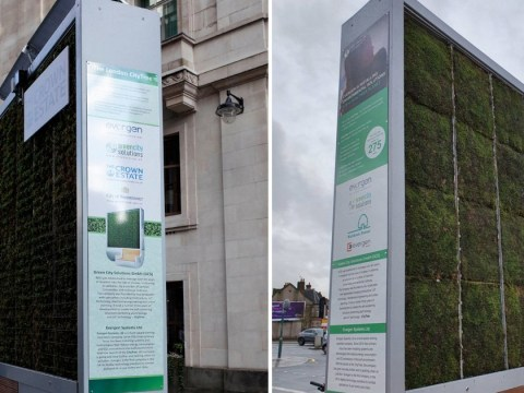 Anti-pollution device that cleans air as well as 275 trees installed in London