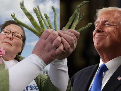 Woman uses asparagus to predict Trump will win election but will be impeached
