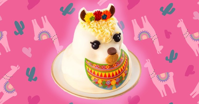 Fine Tesco Is Selling A Llama Cake For All Your Celebratory Needs Funny Birthday Cards Online Eattedamsfinfo