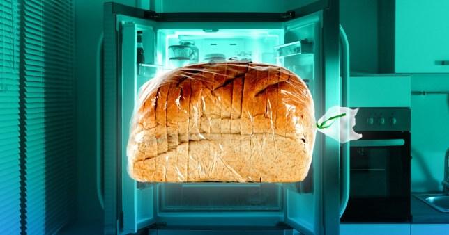 image of bread in a fridge