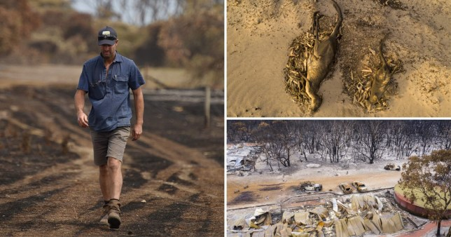 Australian farmers count the cost of wildfires on precious nature reserve Kangaroo Island (Picture: Getty)