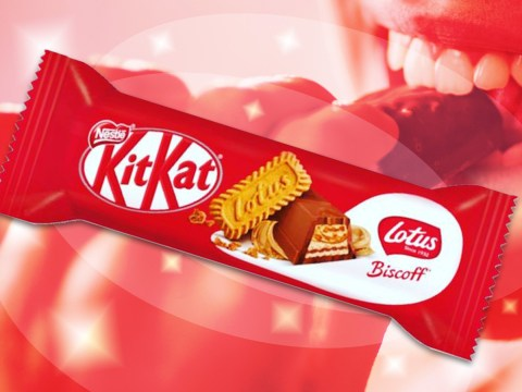 You can now buy Lotus Biscoff KitKats in the UK