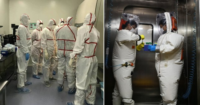 corona virus from lab in wuhan