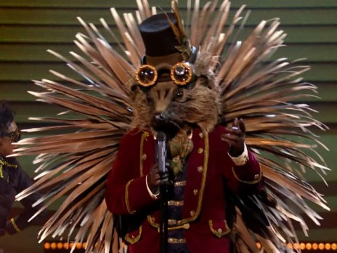 Who is the Hedgehog on The Masked Singer? Top theories so far